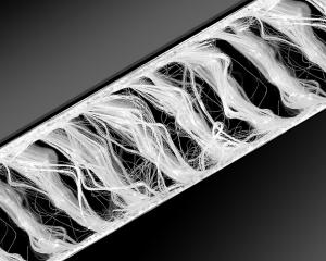 0x0-microfilaments